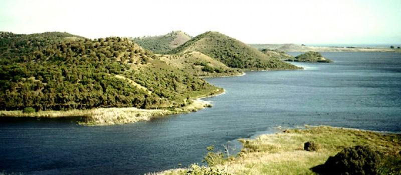 Renner Springs