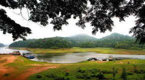 Thekkady Honeymoon Place