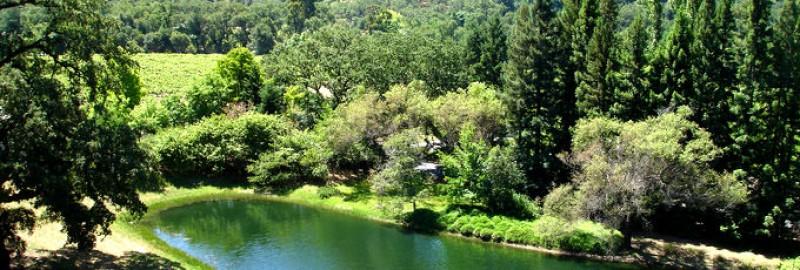 Napa Valley Honeymoon Place