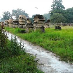 Dimapur, Nagaland