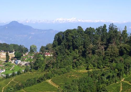 Darjeeling Special Himalayan Honeymoon Package