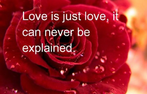 Valentine Day Romantic Quotes