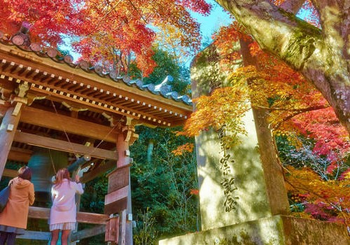 The Golden Route Japan Honeymoon Tour Package