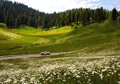 Crimson Shades of Love in Gulmarg Honeymoon Package