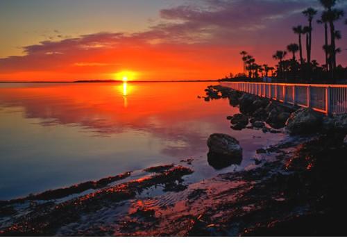 Tampa, St. Petersburg 7 Days Honeymoon Package