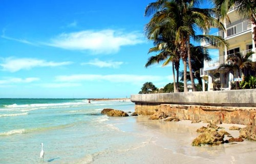 Romantic Things To Do in Sarasota