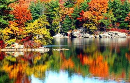 Romantic Things Couples Can Do in Autumn