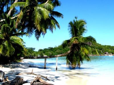 Kenya Island
