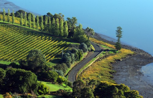 Why Visit Tasmania – A Place Full of beauty Charm and Adventure