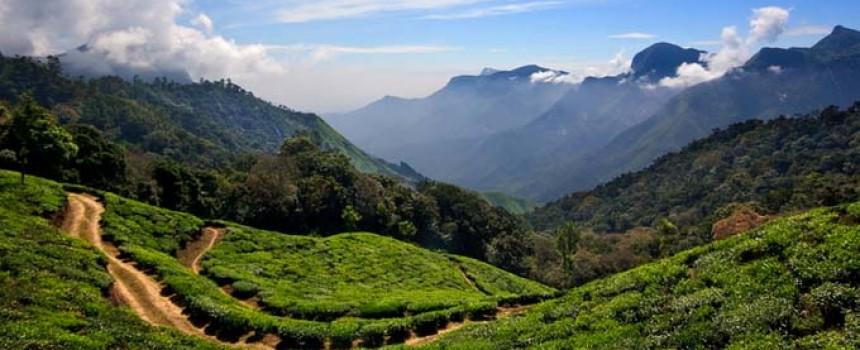 Munnar, Hillstation in Kerala
