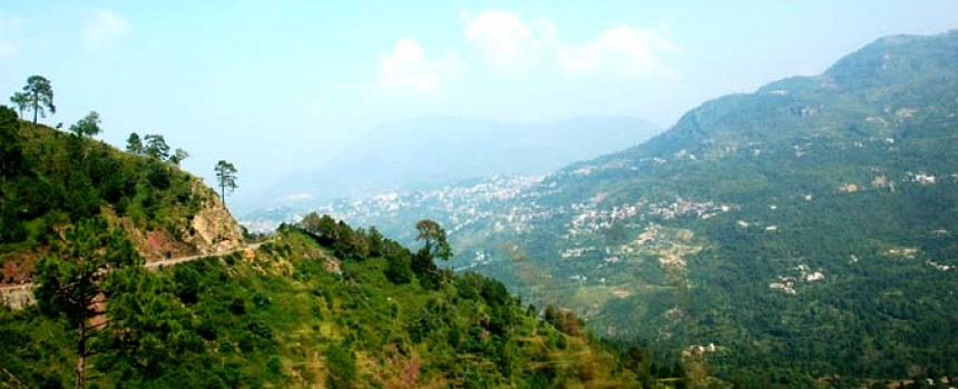 Kasauli region