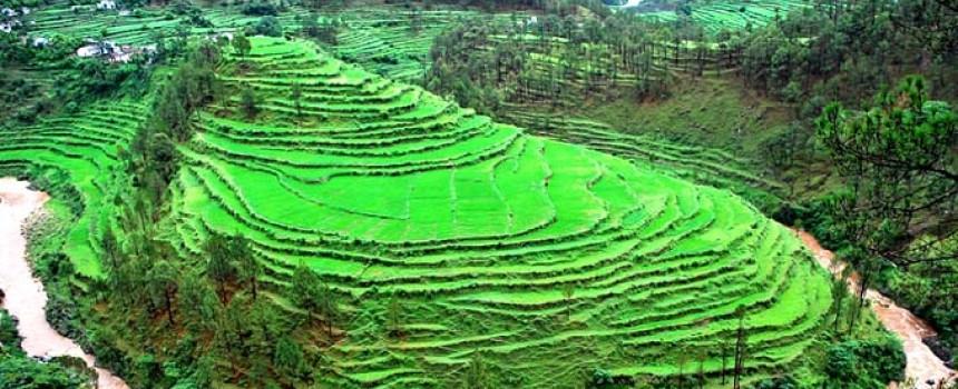 Kausani Valley