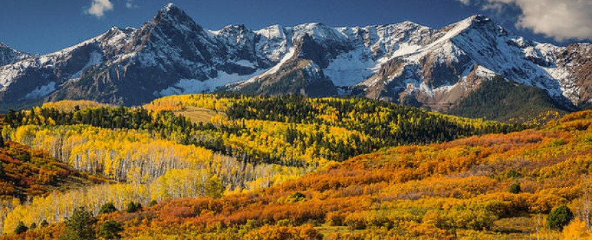 Sublime Beauty of Aspens