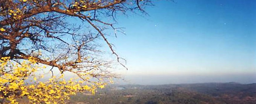 Panchmarhi Hills