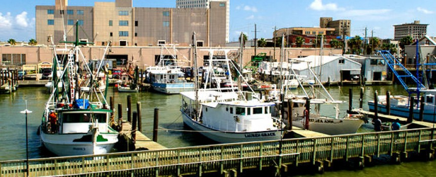 Galveston Harborside