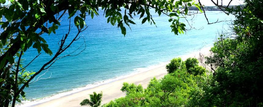 Molokai Shoreline