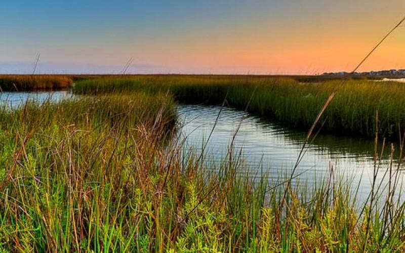 State Park, Galveston
