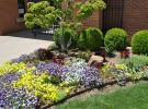 Amarillo-Botanical-Garden