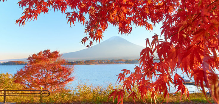 Traditional and Tropical Japan Honeymoon Package
