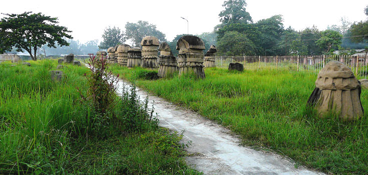 The Glorious Nagaland Honeymoon Tour Package