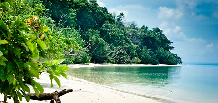 Exotic Andamans Special Honeymoon Package