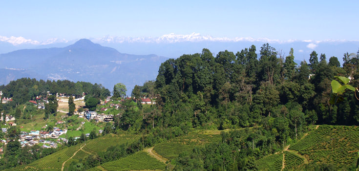Darjeeling Special Himalayan Honeymoon Package