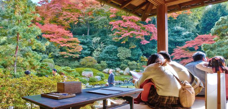 3 Nights Explore Kyoto Romantic Honeymoon Package