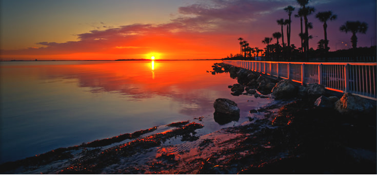 Tampa, St. Petersburg 7 Days Honeymoon Package