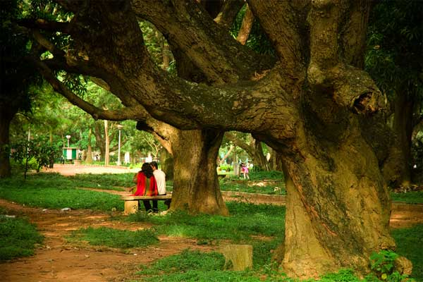 Couples at Cubbon Park