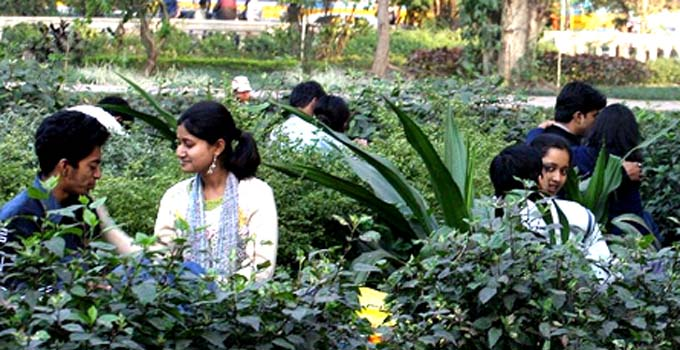Eliot Park in Kolkata