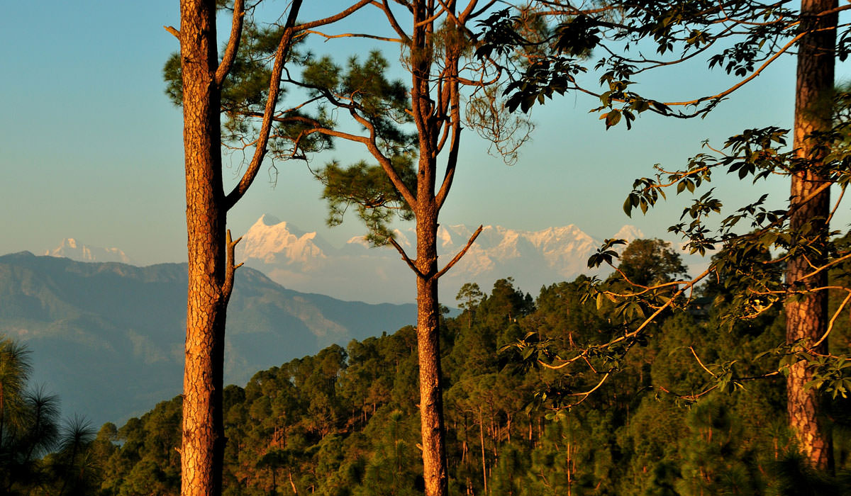 Most Beautiful Hill Stations For a Romantic Escape in India