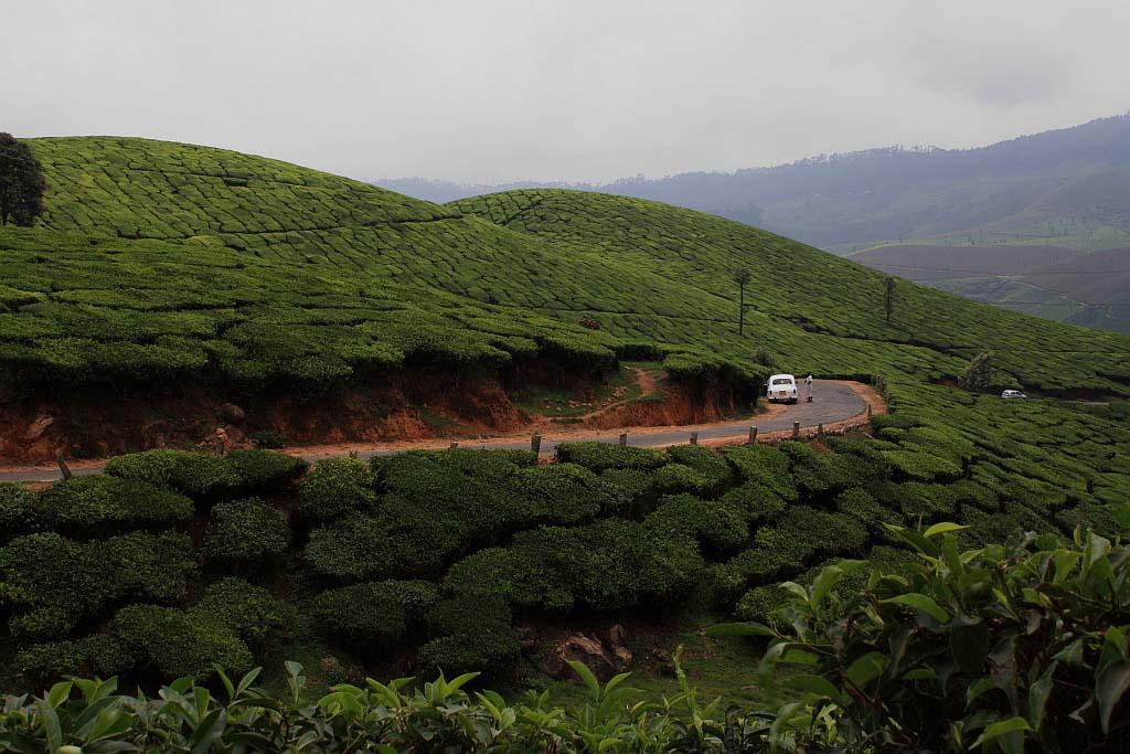 3 Nights 4 Days Kerala Honeymoon Packages